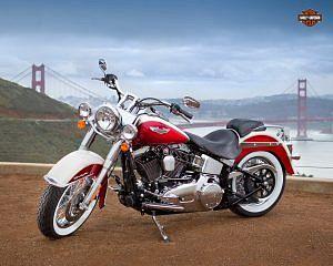 Harley Davidson FLSTN Softail Deluxe (2013)