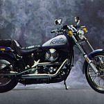 Harley Davidson FXSTC 1340 Softail Custom (1986)